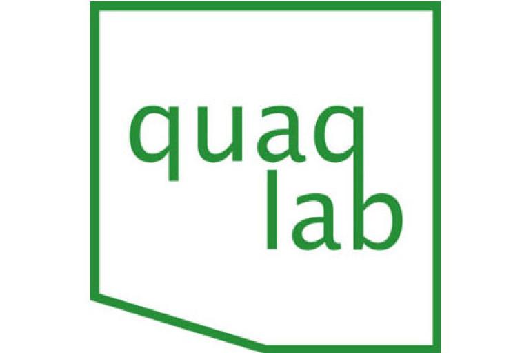 IT-компания QuaqLab LLC